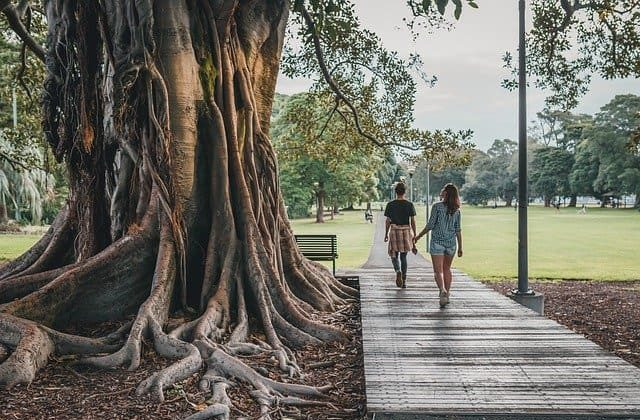 Personas caminando en Centennial Park en Sydney