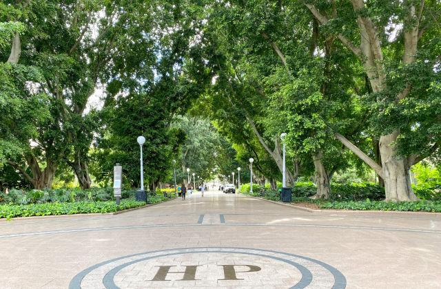 El parque Hyde Park en Sydney