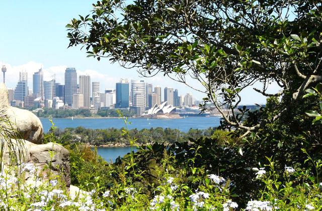 Vista de la Casa de la Ópera. Uno de los lugares que puedes visitar con la visa de pareja en Australia